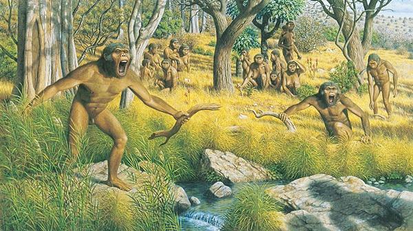 australopithecus_family