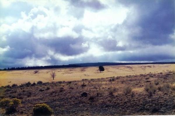 Steens Mountain Scene2