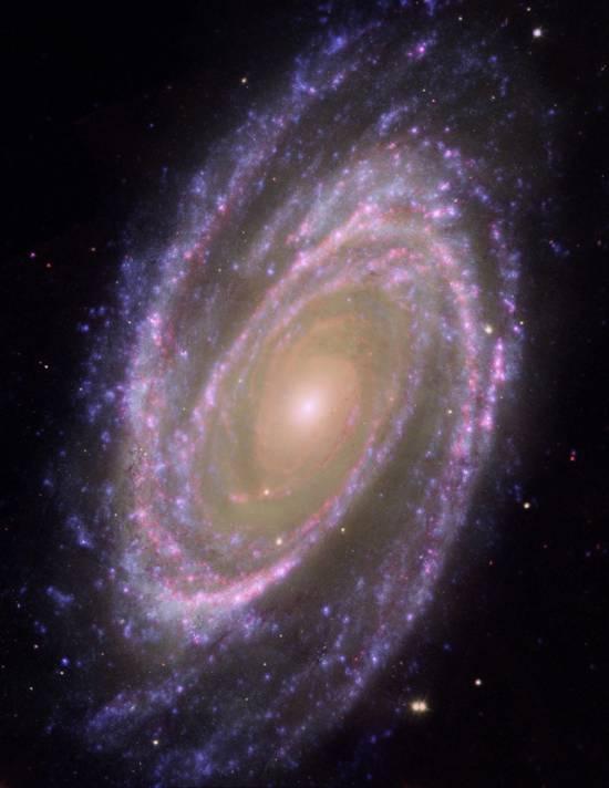 Pink-Galaxy