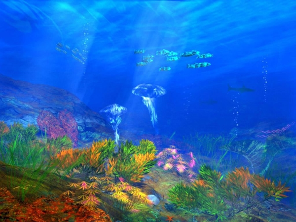 free-undersea-animal_132483