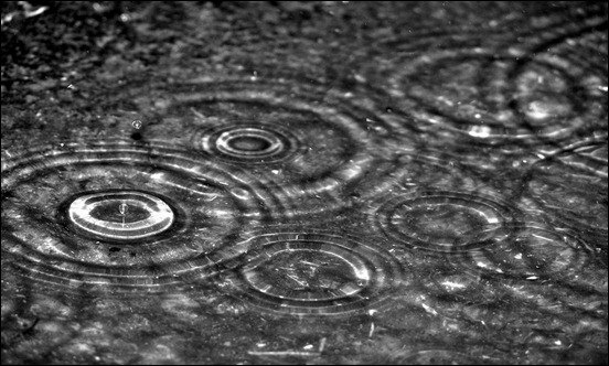 rain-drops-wallpapers